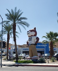September 16, 2019 (17) (gaymay) Tags: california desert gay love palmsprings riversidecounty coachellavalley sonorandesert nissan cathedralcity fox carfox