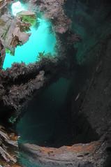 Scotland-201908-Orkney-Dive8-F2andYC21-18-F2-Interior (Tony J Gilbert) Tags: orkneys scotland scubadiving orkneyislands marine diving marinefish nikond300 60mmlens 105mmlens underwater underwaterphotography travel travelogue scottishtravel scottishscubadiving scottishlandscapes scottishwildlife