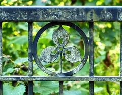 Ironwork Trillium (sharon'soutlook) Tags: railing iron trillium greenery foilage verdigris glenwoodgardens woodlawn ohio greatparksofhamiltoncounty cincinnati