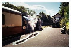 A Snap While Waiting (Gingydadtog) Tags: bodmin bodmingeneralstation cornwall kodakcolorplus200 locomotive olympusmju1 steam