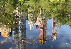 NY central park reflections (panoround hutter) Tags: art nature arte travel natureza nyc newyork city usa fall herbst otoño autumn hutterdesign