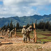 Soldiers prepare for the new marksmanship standards by conducting a pilot program at Schofield Barracks