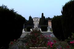 Verderio (CarloAlessioCozzolino) Tags: verderio fontana fountain parcofontanadinettuno statua statue rose fiori flowers