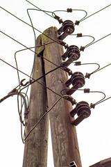 400 V Powerline (Markus Branse) Tags: 400vpowerline 3phasesplusneutral power pole germany deutschland freileitung 230 v volt 400 voltage low strom insulator insulators isolatoren isolator prozellan keramik glas elektrizität strommast maste mast masten line pylon stromleitung