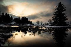 Sur les Hauteurs de la Besse (88) (Jean Marc GAVOILLE) Tags: sunrise brume nuage sapin contrejour vosges france lac reflet neige hiver