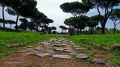 Roma:Via Latina antica nel Parco delle Tombe di via Latina (Michele Monteleone) Tags: michelemonteleone45 canon 5dmarkiii 2019 strada sreet pietra prato cielo albero vestigia ruderi roma