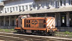 CP1429  Lisbon Santa Apolonia 10/09/2019 (Waddo's World of Railways) Tags: cp cp1400 class1400 portugal lisbon lisbonsantaapolonia santaapolonia lisbonsantaapoloniastation santaapoloniastation station rail railway train ee englishelectric class20 portugueseclass20 diesel dieselloco cp1429 1429 cpclass1400