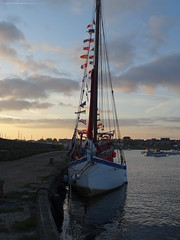 The Reder Mor (MX 842857) is a replica of a Roscoff tailer (longliner) , typical fishing boat of the Bay of Morlaix (guyfogwill) Tags: guyfogwill guy fogwill france september septembre brittany bretagne finistère roscoff boats bateau boat brehec républiquefrançaise bateaux holiday europe breizh bertaèyn 29680 29 rosko 2019 bâteaux vacances mx842857 1992 redermor flicker photo interesting absorbing engrossing fascinating riveting gripping compelling compulsive beach water coastline coastal