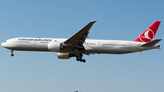 Turkish Airlines Boeing 777-3F2/ER TC-JJP (StephenG88) Tags: londonheathrowairport heathrow lhr egll 27r 27l 9r 9l boeing airbus august25th2019 25819 myrtleavenue renaissanceheathrow turkishairlines turkish thy tk 777 77w 777300er 7773f2er tcjjp