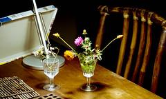flowers (bluebird87) Tags: flowers nikon dx0 c41 epson v800 kodak ektar jobo lightroom