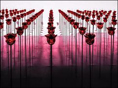 P9142448-B_fl - renate bertlmann auf der biennale 2019 (gemischtersatz) Tags: olympus mft mzuiko mzuiko40150mmf28pro olympusem10iii cross renatebertlmann österreichischerpavillon biennale2019giardinivenedigveitalienmirrorless