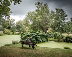Lady by the lake. (James-Burke) Tags: tranquility berkshire candid peaceful bench watergardens thames lady street cookham odney