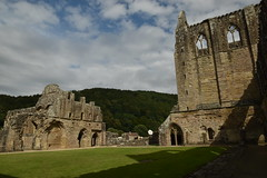 Cloister Area (CoasterMadMatt) Tags: abatytyndern2019 abatytintern2019 tinternabbey2019 abatytyndern abatytintern tinternabbey abaty tyndern tintern abbey cistercianorder cistercianabbey tinternabbeyruins ruin ruins ruined cistercianabbeysinwales welshcistercianabbeys cloister cloisters monastery monasteries cadw welshhistory historyinwales history sirfynwy monmouthshire sir fynwy cymru wales greatbritain gb unitedkingdom uk europe july2019 summer2019 july summer 2019 coastermadmattphotography coastermadmatt photos photography photographs nikond3500