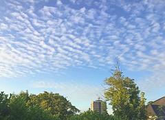 Mackerel sky (BrooksieC) Tags: sky clouds mackerelsky autumn ireland