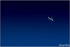 (Sir George R. F. Edwards) Tags: avgeek plane planelover planespotter planespotting aviation aviationspotter aviationspotting airport canon 7dmarkii neos boeing 787 789 dreamliner