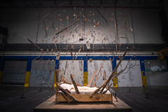 Biennale d'Art Contemporain 2019, Lyon (Laetitia.p_lyon) Tags: fujifilmxt2 biennale artcontemporain lyon usinesfagor contemporary art modernart 2019 shkrepëtima petrithalilaj