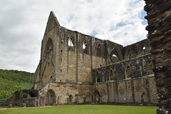 The Abbey from the Cloisters (CoasterMadMatt) Tags: abatytyndern2019 abatytintern2019 tinternabbey2019 abatytyndern abatytintern tinternabbey abaty tyndern tintern abbey cistercianorder cistercianabbey tinternabbeyruins ruin ruins ruined cistercianabbeysinwales welshcistercianabbeys cloister cloisters monastery monasteries cadw welshhistory historyinwales history sirfynwy monmouthshire sir fynwy cymru wales greatbritain gb unitedkingdom uk europe july2019 summer2019 july summer 2019 coastermadmattphotography coastermadmatt photos photography photographs nikond3500