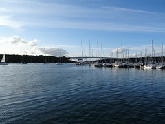 Bénodet (Brittany, France) 2019 (guyfogwill) Tags: guyfogwill guy fogwill france september septembre brittany bretagne finistère boats bénodet bateau boat brehec républiquefrançaise bateaux europe 29950 benoded 29 2019 bâteaux vacances cornouaille paysfouesnantais pennarbed flicker photo interesting absorbing engrossing fascinating riveting gripping compelling compulsive beach water coastline coastal