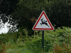 flying_1_1600 (psnikon) Tags: nikon nikonphotography nikond800e nikon28105afd nikkor28105 schild reh sign streetsign verkehrsschild