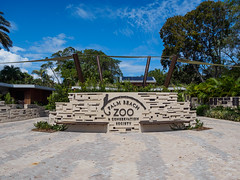 Palm Beach Zoo (Joey Hinton) Tags: olympus omd em1 40150mm f28 palm beach zoo florida mft m43 microfourthirds