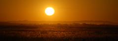 Na luz da tarde (Eduardo Amorim) Tags: pôrdosol poente entardecer poniente atardecer sunset tramonto sonnenuntergang coucherdesoleil crepúsculo anoitecer pelotas costadoce riograndedosul brésil campo field champ auffangen iayayam yamaiay sol sun soleil sole sonne brasil sudamérica südamerika suramérica américadosul southamerica amériquedusud americameridionale américadelsur americadelsud brazil eduardoamorim