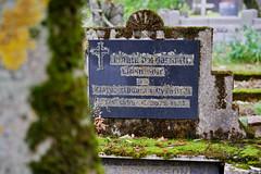 Hólavallagarður Cemetery, Reykjavík, Iceland (jhberger505) Tags: moss lichen