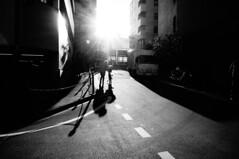 (ademilo) Tags: street streetphotography streetlight sky sunset sun sunlight sunshine shadows shadow city cityscape citylife contrast building blackandwhite backlight beautiful bicycle beauty highcontrast road roadside tokyo town townscape japan monochrome