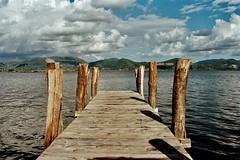 Lago di Massaciuccoli (michele.palombi) Tags: negativocolore c41 tetenal ektar100 kodak film35mm analogicshot clouds tuscany lagodimassaciuccoli kodakektar100