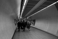 London Tube (Mattia_EFA) Tags: london londra tube metro bw blackandwhite street d610 2470 people life city