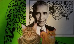 Inner beast (Moon Rhythm) Tags: coolcats trash collage ideology ideaology menkeillustration clippedfrombaltimoresun1980 clippedfromcatfoodbag innuendo twofaces three first politicat alsohumor newspaper brazil1980 amazon1980 oldnews president suits iconicats appearances innerself symbolic obamawars inyourear outward wars syria