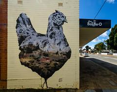 Chook (Robert E C) Tags: art beverley shop chicken wall