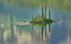 Paddling in Paradise (Valley Imagery) Tags: st lake glacier national park morning water reflection kayak paddle island calm usa mary montana wild goose sony a99ii 70400gii green capture1