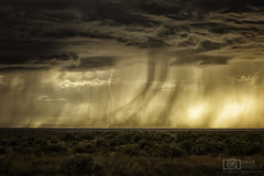 Too hard, give up now (Dave Arnold Photo) Tags: nm nmex newmex newmexico loslunas adelino tome socorro riogrande valley lightning lightening desert storm stormy thunderstorm thunder image pic us usa picture severe photo photograph photography photographer davearnold davearnoldphotocom sunset scenic cloud rural party summer badweather top wet canon 5d mkiii 100400mm huge big valenciacounty landscape nature monsoon outdoor weather rain rayos cloudy sky cloudburst raincolumn rainshaft season mountains southwest monsoons strike albuquerque abq