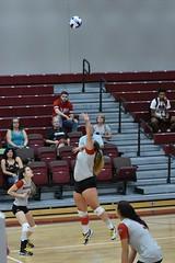 HJT_7973 (H. James Tollett III) Tags: montgomerycountycommunitycollege buckscountycommunitycollege volleyball