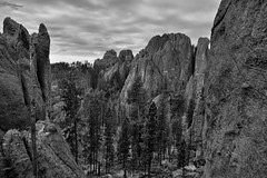 So There I Was Driving Along the Needles Highway...and I Had to Stop! (Black & White, Custer State Park) (thor_mark ) Tags: azimuth198 blackwhite blackhills capturenx2edited cloudy colorefexpro custerstatepark erodedgranitespires erodedgranitetowers evergreentrees evergreens greatplains hillsideoftrees landscape lookingssw mountains mountainsindistance mountainsoffindistance nature needleshighway nikond800e northamericaplains outside overcast pahásápa portfolio project365 rollinghillsides sdhwy87 silverefexpro2 southdakotahwy87 southernblackhills spires theneedles trees southdakota unitedstates