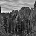 So There I Was Driving Along the Needles Highway...and I Had to Stop! (Black & White, Custer State Park)