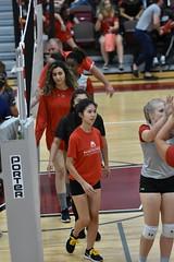 HJT_8003 (H. James Tollett III) Tags: montgomerycountycommunitycollege buckscountycommunitycollege volleyball