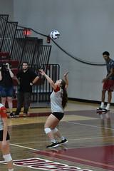 HJT_7984 (H. James Tollett III) Tags: montgomerycountycommunitycollege buckscountycommunitycollege volleyball