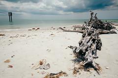 DSC_5164-Edit (wreckdiver1321) Tags: beach family fl florida gulf key landscape lovers mexico naples ocean park sand seascape state sun surf vacation