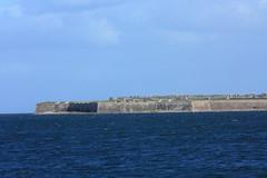AFC1-24 Fort George from Chanonry Ness, Black Isle (timonrose1) Tags: fortgeorge chanonrypoint chanonryness rosemarkiebay morayfirth