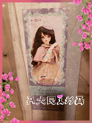 Finally unboxed.. (atrikaa) Tags: volk volks balljointeddoll bjd resin superdollfie sdlieselotte