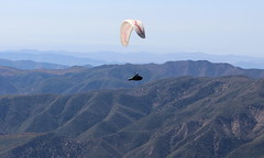 Gliding By In The Beautiful Sky. Para Glider Over Sespe Wilderness (Trail Trekker) Tags: lospadresnationalforest venturacountycalifornia paraglider paragliding sky landscape