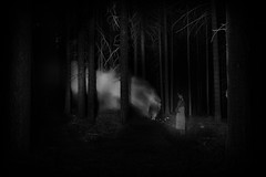 secret life (the ripped bystander) Tags: blackwhite forest darkness night longexposure female white dress