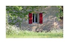 Les volets rouges (Yvan LEMEUR) Tags: volets fenêtre voletsrouges extérieur lemoustier périgord campagne dordogne vézère valléedelavézère valléedelhomme peyzaclemoustier