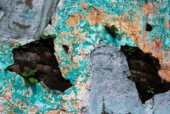 Old wall, Guatemala (klauslang99) Tags: klauslang old wall abstraction paint guatemala mottled pattern