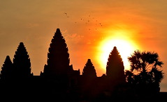 Sunrise behind landmark Angkor Wat ancient temple towers silhouette, Cambodia (German Vogel) Tags: buddhisttemple nationallandmark locallandmark early morning sunrise ruined archaeology oldruin ancientcivilization towers silhouette galleriedtemple templemountain khmerarchitecture khmerempire 12thcentury hinduism buddhism hindutemple travel tourism traveldestinations touristattractions famousplace cambodia asia southeastasia holidaydestinations siemreap siemreapprovince angkor unescoworldheritagesite cultures khmer architecture ancient nikonafsnikkor70300mmf4556g