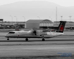 An Air Canada Express Q400 Landing at YVR in Black, White and Red (AvgeekJoe) Tags: 100400mmf563 aircanada aircanadaexpress bombardierdhc8402q bombardierdash8400 bombardierdash8q402 bombardierq400 cggdu d7500 dhc8402q dslr dash8 dash8400 dehavillandaircraftofcanada dehavillandaircraftofcanadadash8400 dehavillandcanadadhc8402qdash8 dowtyr408 dowtyr408propeller nikon nikond7500 propeller propliners q400 r408 sigma sigma100400mmf563 sigma100400mmf563dgoshsmcontemporary aircraft airplane aviation plane propliner telephotolens turboprop