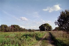 September 2019 - Zavidovo village (stepanov9) Tags: 28300mmf3563afcompactaspifhyperzoom sigma nikonf80 analogphoto negativfilm minoltadimagescanelite5400 nature russia tverregion tree sky