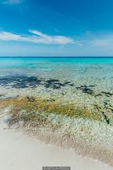 From sand to water (Nicola Pezzoli) Tags: formentera isola island spain sea mediterraneo mare holiday vacanze baleari baleares nature natura beach sand water es calo swim gradient blue