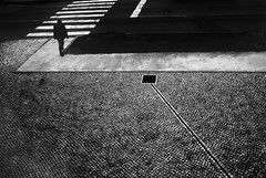Only Shallow (paulo josé abrantes) Tags: rollei 35s analogue street photography film urban carlzeiss adox chs100ii highcontrast blackandwhite bw